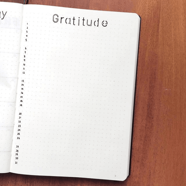 Selfcare Gratitude Log Bullet Journal